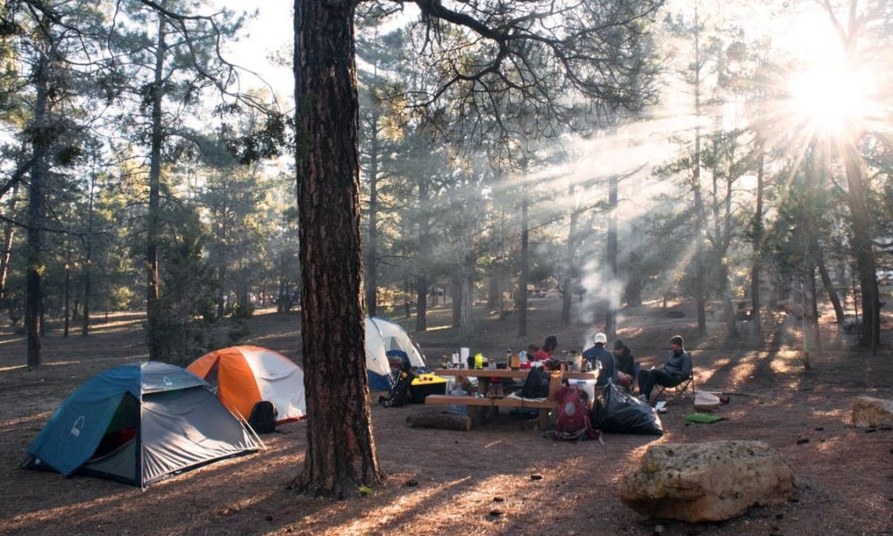 How to Eat Healthy While Camping in the Woods