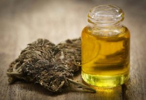 Hemp oil slows down the aging process