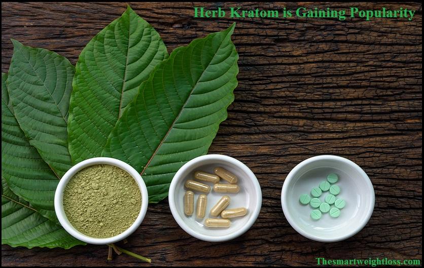 Herb-Kratom-is-Gaining-Popularity