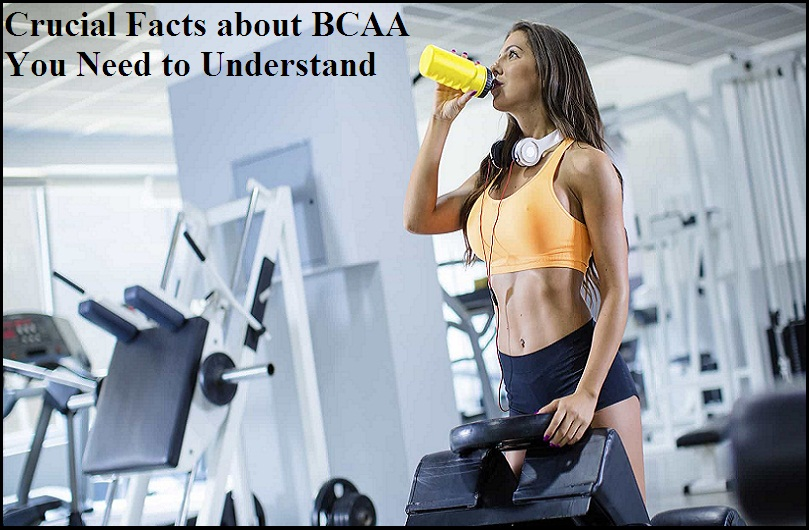 Crucial Facts about BCAA You Need to Understand