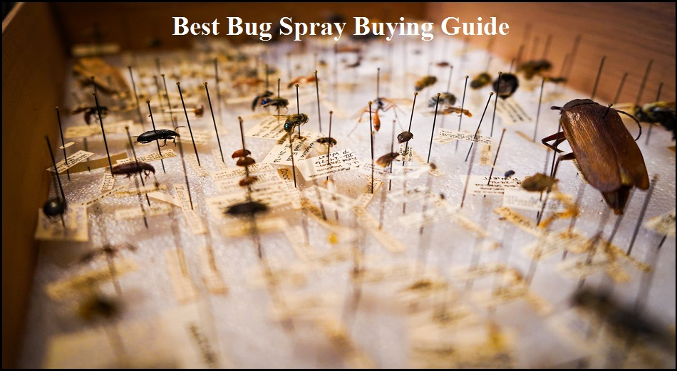 best bug spray buying guide
